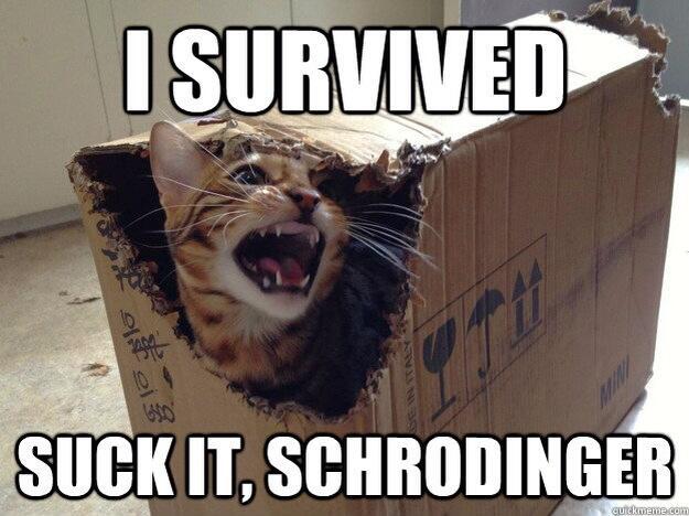 shredinger_cat